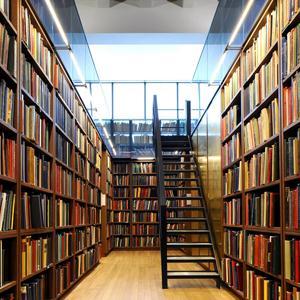 Библиотеки Выездного