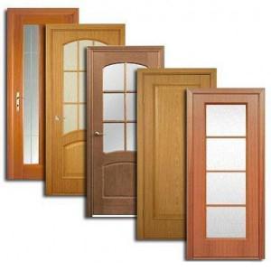 Двери, дверные блоки Выездного